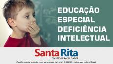EDUCAÇÃO ESPECIAL   DEFICIÊNCIA INTELECTUAL